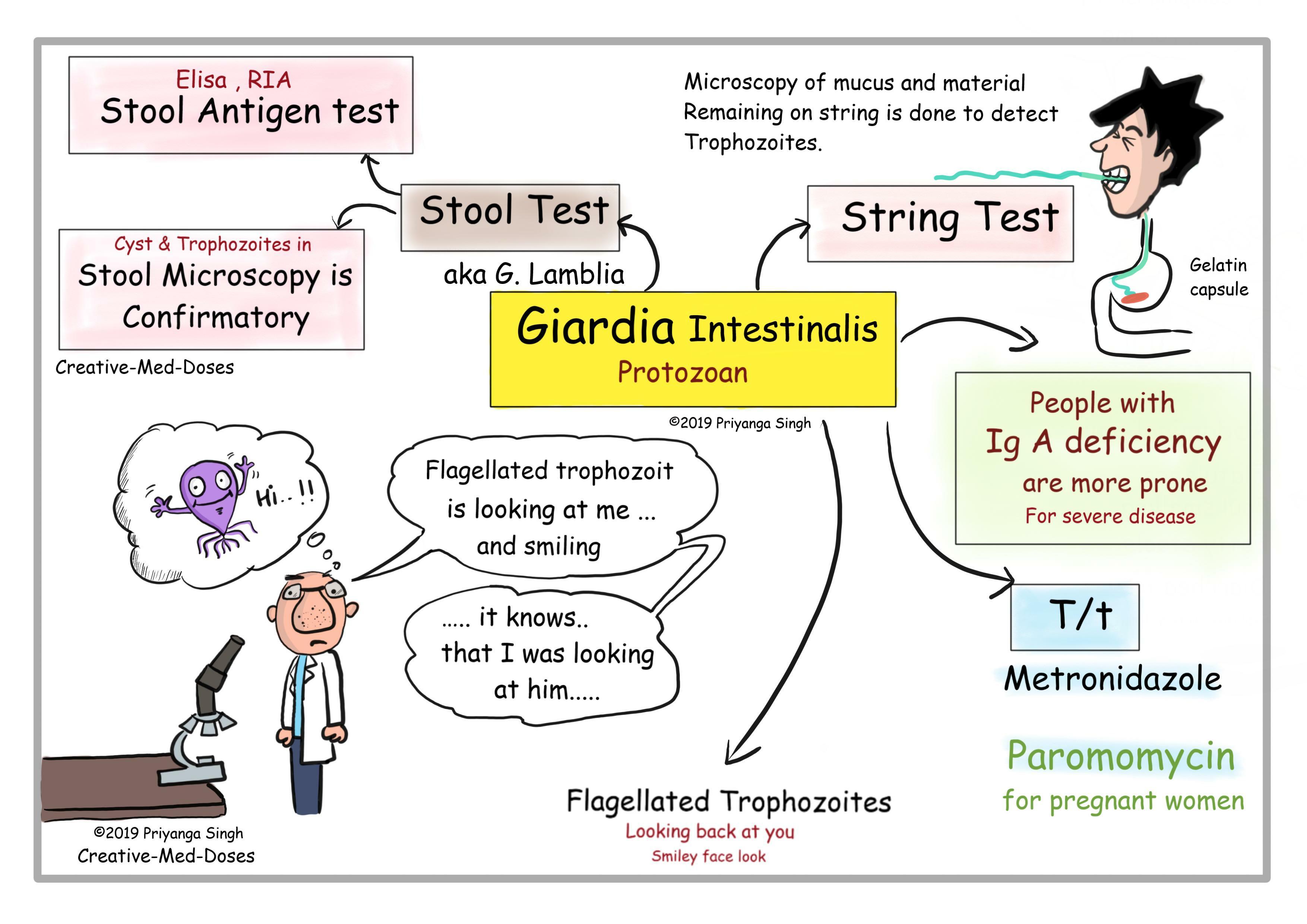 Giardia bloody stool. Echinococcosis- hooklet (hydatid sand) in hydatid fluid